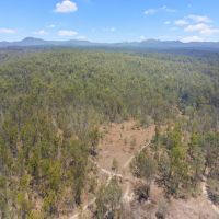 350 Acres of Quality Timber in 2 Titles